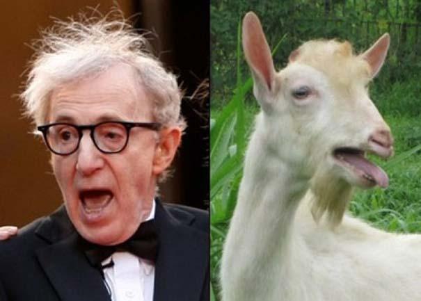 Διάσημοι που μοιάζουν με περίεργα πλάσματα (14)