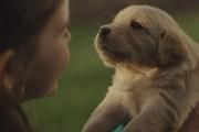 Φίλη για μια ζωή: Η διαφήμιση που συγκίνησε τους χρήστες του διαδικτύου