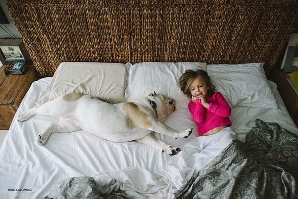 Κοριτσάκι με αγγλικό bulldog (21)