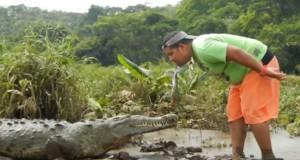 Κοσταρικανός ταΐζει κροκόδειλο σαν να ήταν κατοικίδιο σκυλάκι (Video)