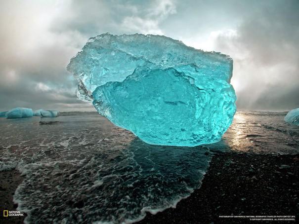 Το πορτραίτο ενός παγόβουνου | Φωτογραφία της ημέρας