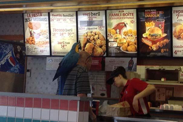 Θεότρελοι πελάτες σε Fast Food (15)