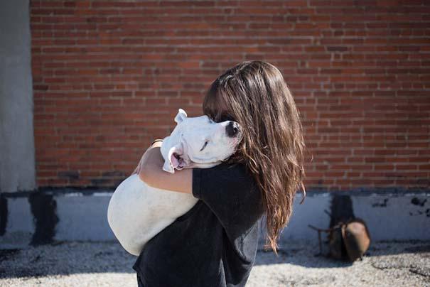 Ζώα από καταφύγια φωτογραφίζονται με τους ανθρώπους που τα υιοθέτησαν (3)