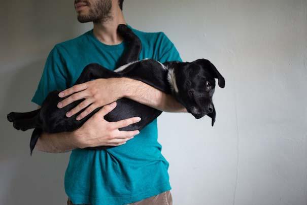 Ζώα από καταφύγια φωτογραφίζονται με τους ανθρώπους που τα υιοθέτησαν (18)