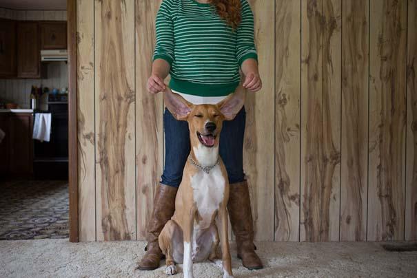 Ζώα από καταφύγια φωτογραφίζονται με τους ανθρώπους που τα υιοθέτησαν (19)