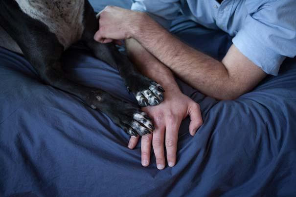 Ζώα από καταφύγια φωτογραφίζονται με τους ανθρώπους που τα υιοθέτησαν (26)