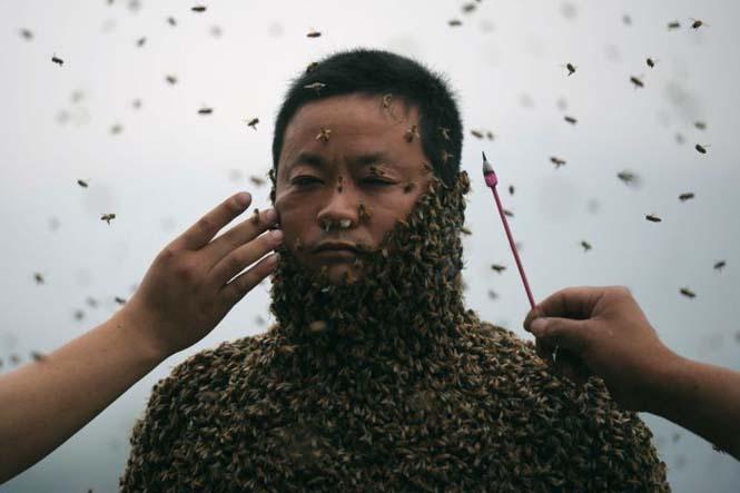 460.000 μέλισσες (4)