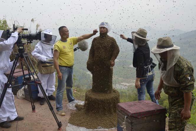 460.000 μέλισσες (5)
