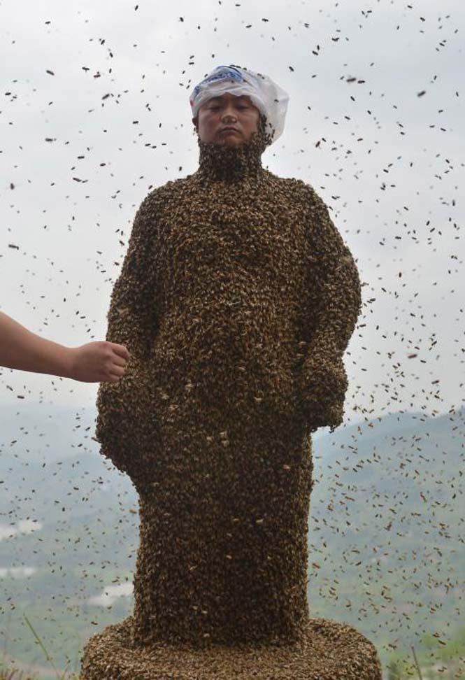 460.000 μέλισσες (6)