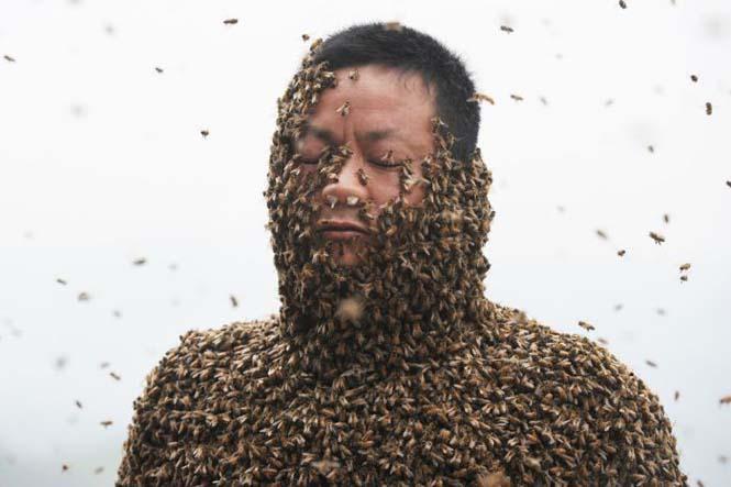 460.000 μέλισσες (7)