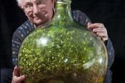 80χρονος διατηρεί «αθάνατο» φυτό σε σφραγισμένο μπουκάλι από το 1972 (1)