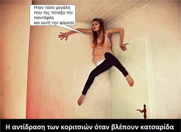 Αστείες Φωτογραφίες (20)