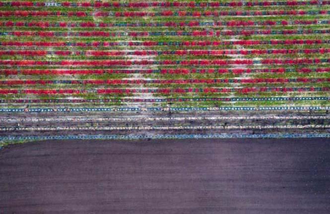 Οι εκπληκτικές εναέριες φωτογραφίες του Kacper Kowalski (4)