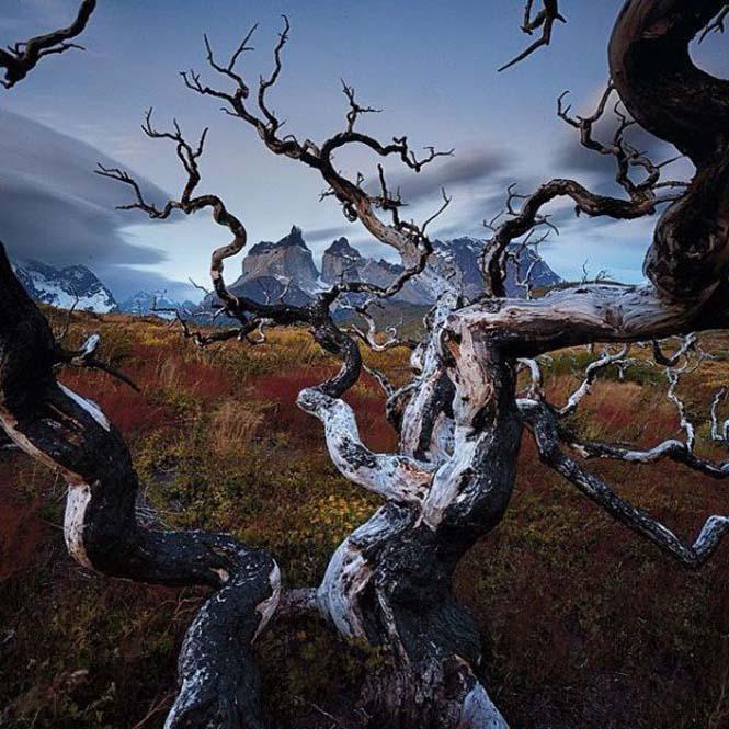 Εκπληκτικές φωτογραφίες του National Geographic στο Instagram (5)