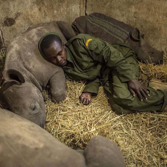 Εκπληκτικές φωτογραφίες του National Geographic στο Instagram (17)