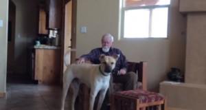 Η θαυματουργή επίδραση ενός σκύλου σε ηλικιωμένο με Αλτσχάιμερ που έχει χάσει την ομιλία του (Video)