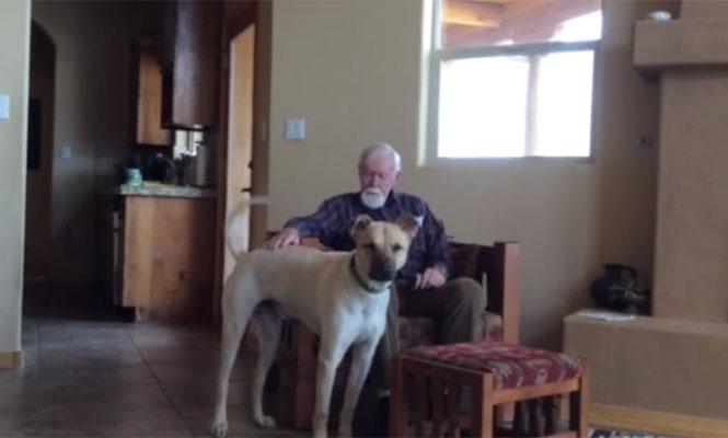 Επίδραση σκύλου σε ηλικιωμένο με Αλτσχάιμερ που έχει χάσει την ομιλία του