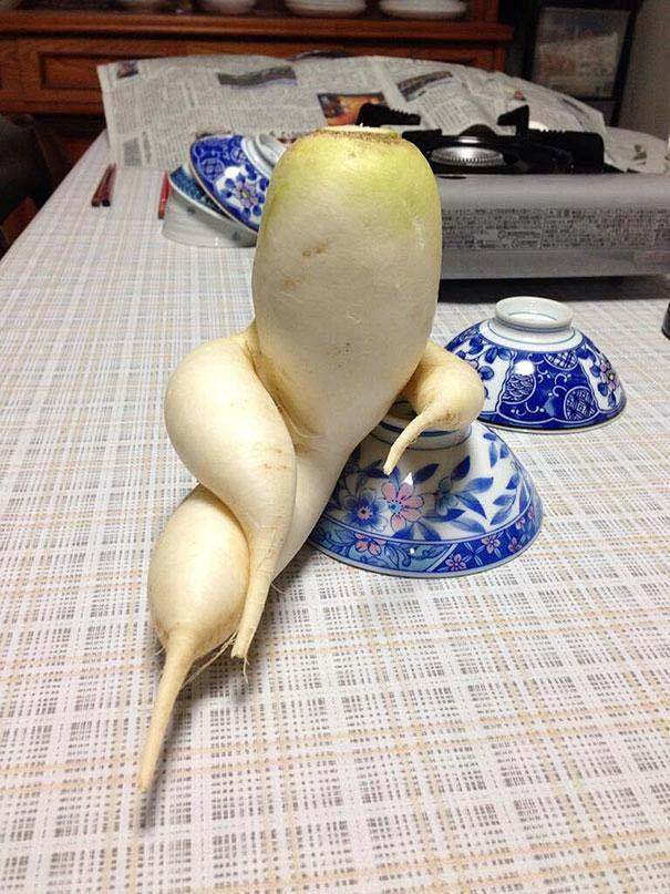 Φρούτα και λαχανικά που μοιάζουν με άλλα πράγματα (1)