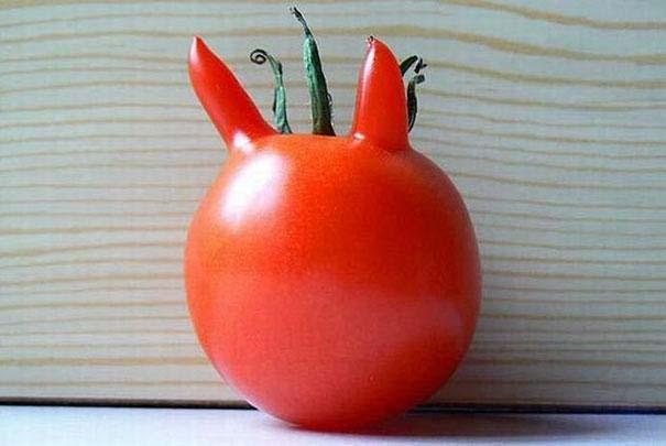 Φρούτα και λαχανικά που μοιάζουν με άλλα πράγματα (5)
