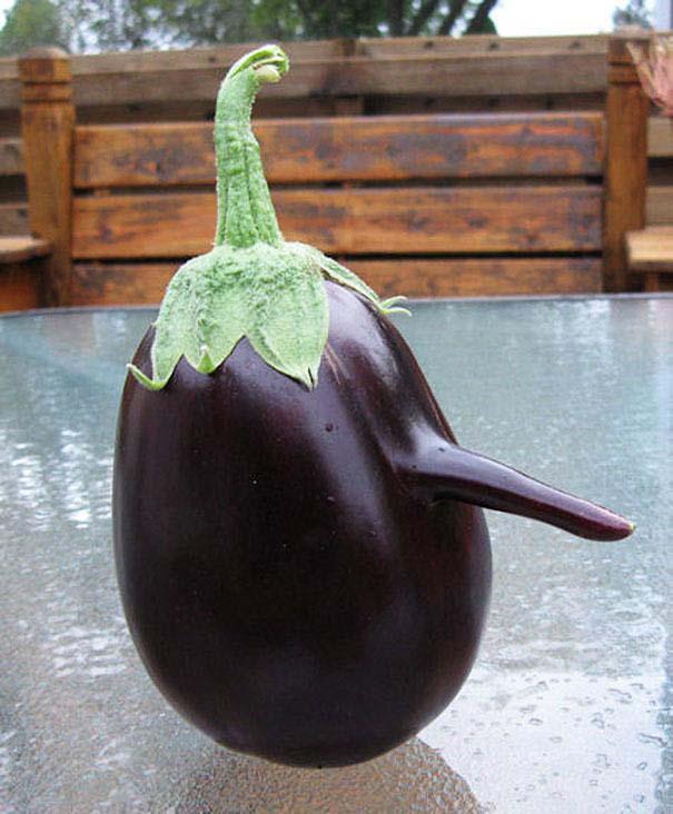 Φρούτα και λαχανικά που μοιάζουν με άλλα πράγματα (8)