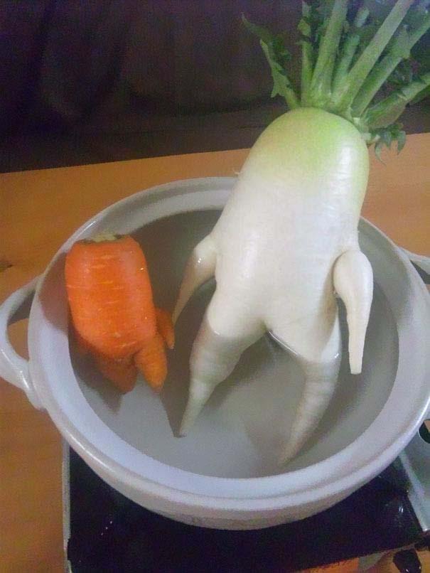 Φρούτα και λαχανικά που μοιάζουν με άλλα πράγματα (12)