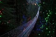 Γέφυρα Capilano στον Καναδά (1)