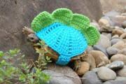 Γυναίκα πλέκει στολές για τις χελώνες της (3)