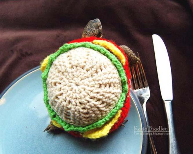 Γυναίκα πλέκει στολές για τις χελώνες της (11)