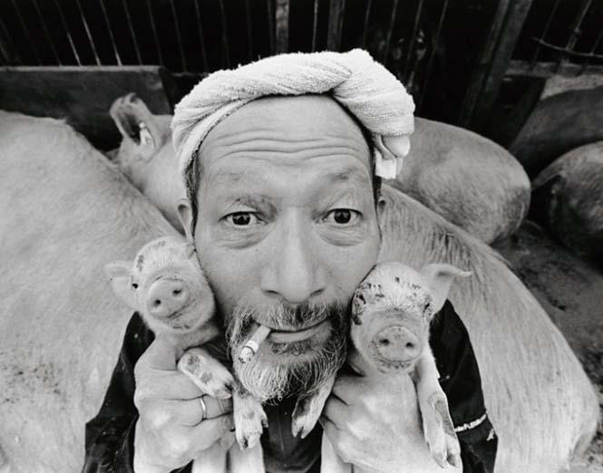 Η μοναδική σχέση ενός αγρότη με τα γουρούνια του (1)