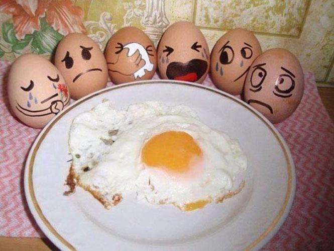 Η κηδεία ενός αυγού   Φωτογραφία της ημέρας