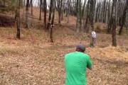 Σκοποβολή σε δέντρο