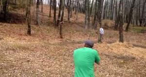 Γιατί είναι κακή ιδέα να κάνεις σκοποβολή σε ένα δέντρο (Video)