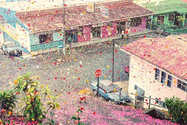 Χωριό στην Κόστα Ρίκα καλύφθηκε από 8 εκατομμύρια πέταλα λουλουδιών (1)