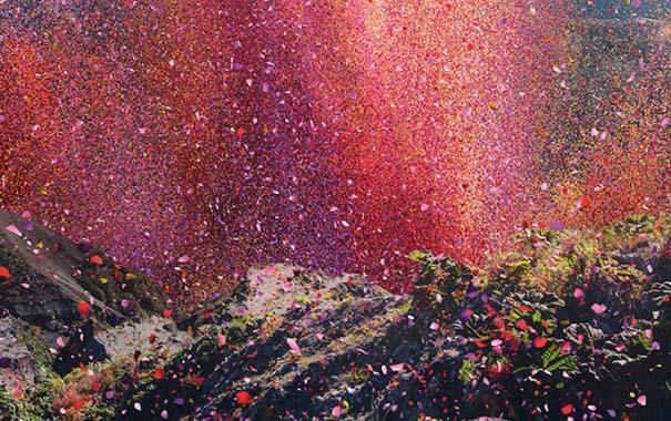 Χωριό στην Κόστα Ρίκα καλύφθηκε από 8 εκατομμύρια πέταλα λουλουδιών (3)