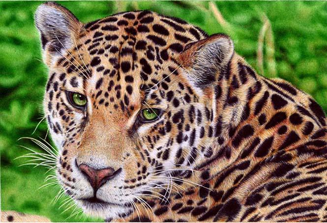 Εκπληκτικές ρεαλιστικές ζωγραφιές με στυλό (5)
