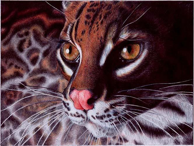 Εκπληκτικές ρεαλιστικές ζωγραφιές με στυλό (6)