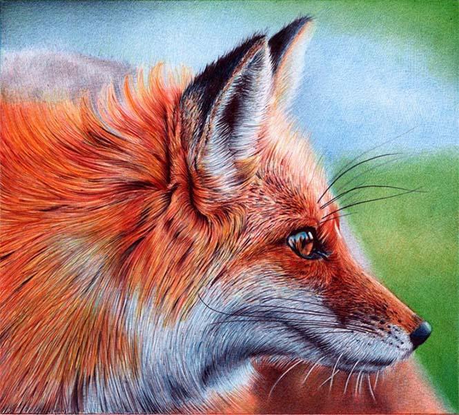 Εκπληκτικές ρεαλιστικές ζωγραφιές με στυλό (10)