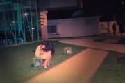 Ένα κορίτσι κλαίει μόνο του στον δρόμο...