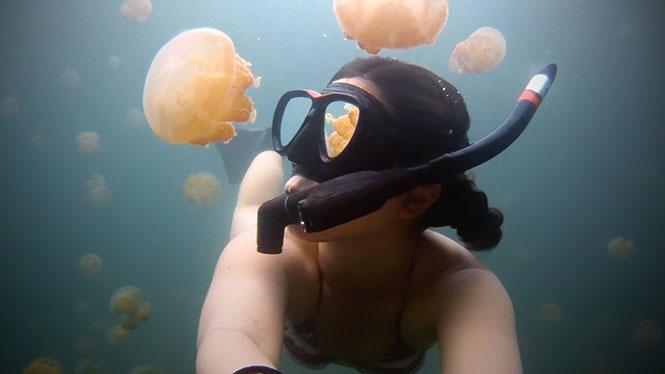 Κορίτσι κολυμπάει σε μια λίμνη γεμάτη από χιλιάδες μέδουσες (1)