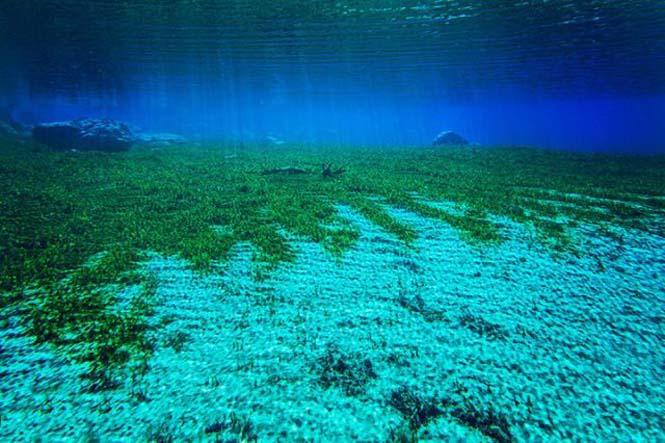 Κρυστάλλινη λίμνη στη Νέα Ζηλανδία (7)
