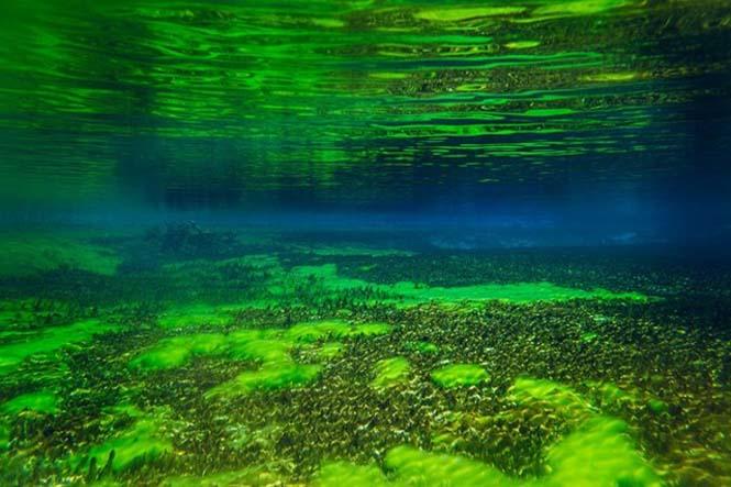 Κρυστάλλινη λίμνη στη Νέα Ζηλανδία (11)