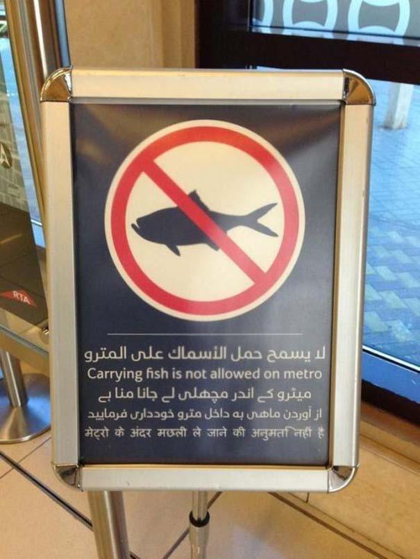 Εν τω μεταξύ, στο Dubai... (18)