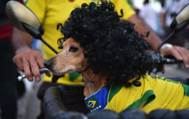 Οι 43 πιο τρελοί και αστείοι φίλαθλοι του Μουντιάλ της Βραζιλίας (4)
