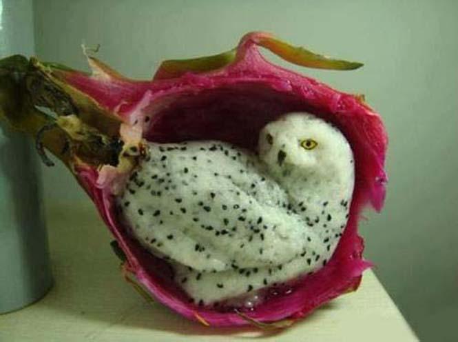 Γλυπτά από φρούτα και λαχανικά (4)