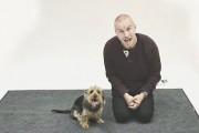 Πως αντιδρούν οι σκύλοι στο ανθρώπινο γάβγισμα