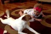 Σκύλος δείχνει σε μωρό πως να μπουσουλάει