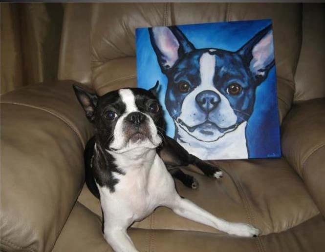 Ζώα ποζάρουν με το πορτραίτο τους (4)