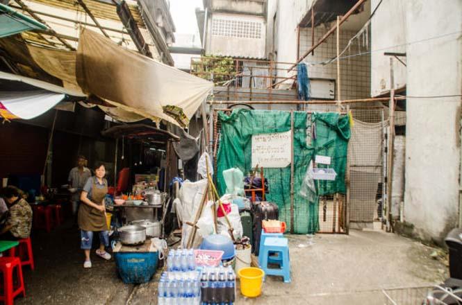 Εγκαταλελειμμένο εμπορικό κέντρο στην Μπανγκόκ απέκτησε περίεργους νέους κατοίκους (6)