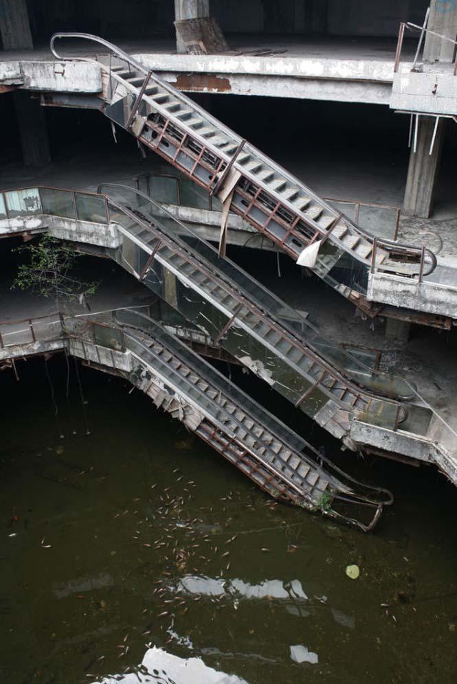 Εγκαταλελειμμένο εμπορικό κέντρο στην Μπανγκόκ απέκτησε περίεργους νέους κατοίκους (13)