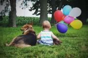 Ένα μωρό και ο τετράποδος κολλητός του (9)